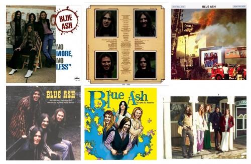 Blue Ash Collage