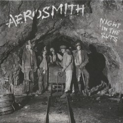 AEROSMITH - Night In The...