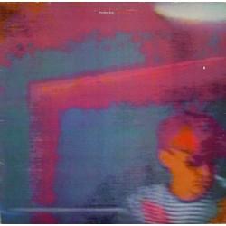 PET SHOP BOYS - Disco LP...