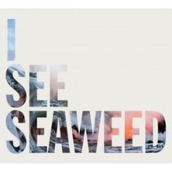  DRONES - I See Seaweed  LP