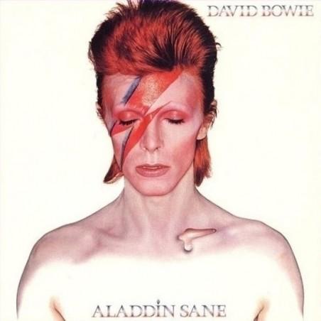 DAVID BOWIE - Aladdin Sane LP Picture Disc