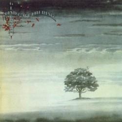 GENESIS - Wind & Wuthering LP