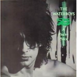WATERBOYS - A Pagan Place LP