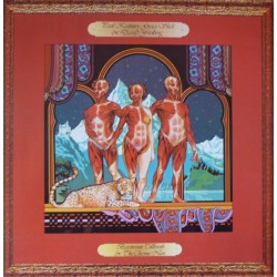 PAUL KANTNER, GRACE SLICK & DAVID FREIBERG - Baron Von Tollbooth & The Chrome Nun LP (Original)