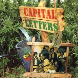 CAPITAL LETTERS - Vinyard LP