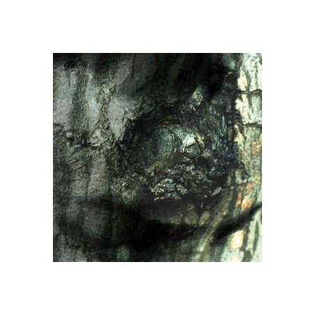 YANN TIERSEN - The Waltz Of The Monsters LP