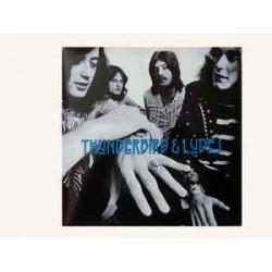 LED ZEPPELIN – Thunderbird & Ludes  LP