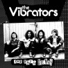 VIBRATORS - The 1976 Demos LP