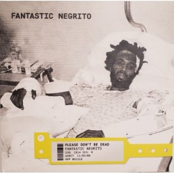 FANTASTIC NEGRITO - Please Don't Be Dead LP