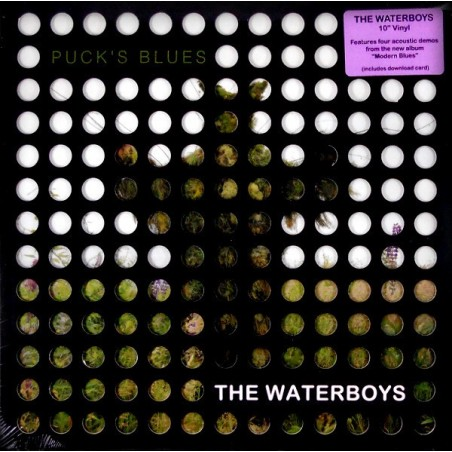 """WATERBOYS - Puck's Blues 10"""" EP"""