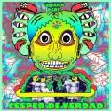 CESPED DE VERDAD - Césped De Verdad LP