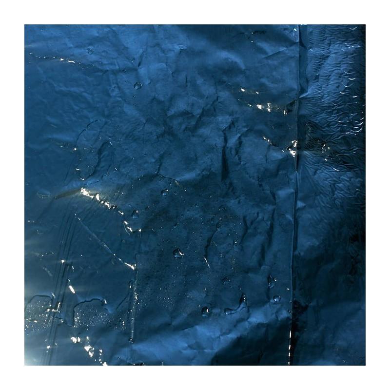 POLSEGUERA - Vida Grisa LP