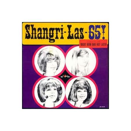 SHANGRI-LAS - Shangri-Las - 65! LP