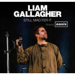 LIAM GALLAGHER - Still Mad Fer It, Singing Oasis